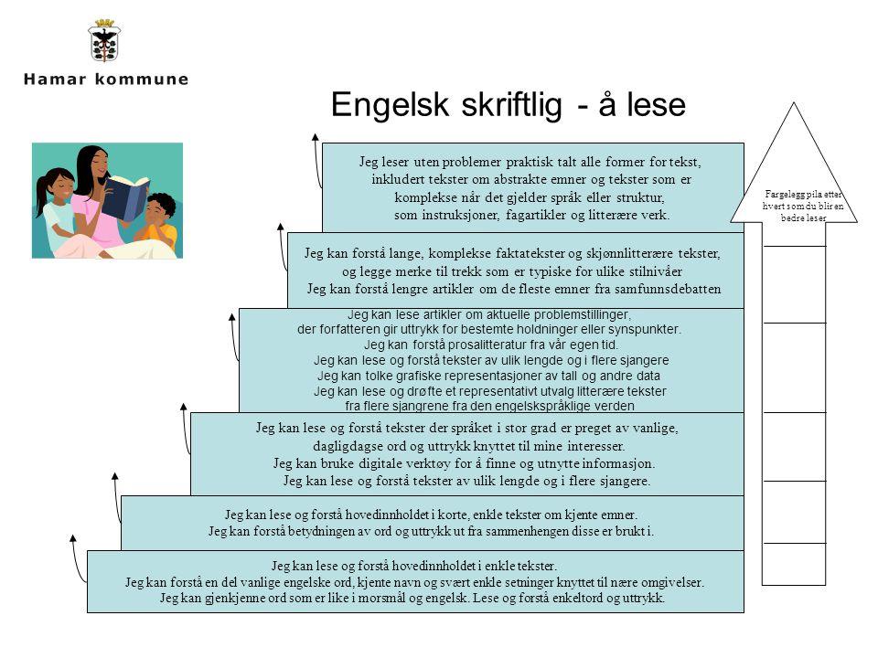Jeg kan lese og forstå hovedinnholdet i enkle tekster. Jeg kan forstå en del vanlige engelske ord, kjente navn og svært enkle setninger knyttet til næ
