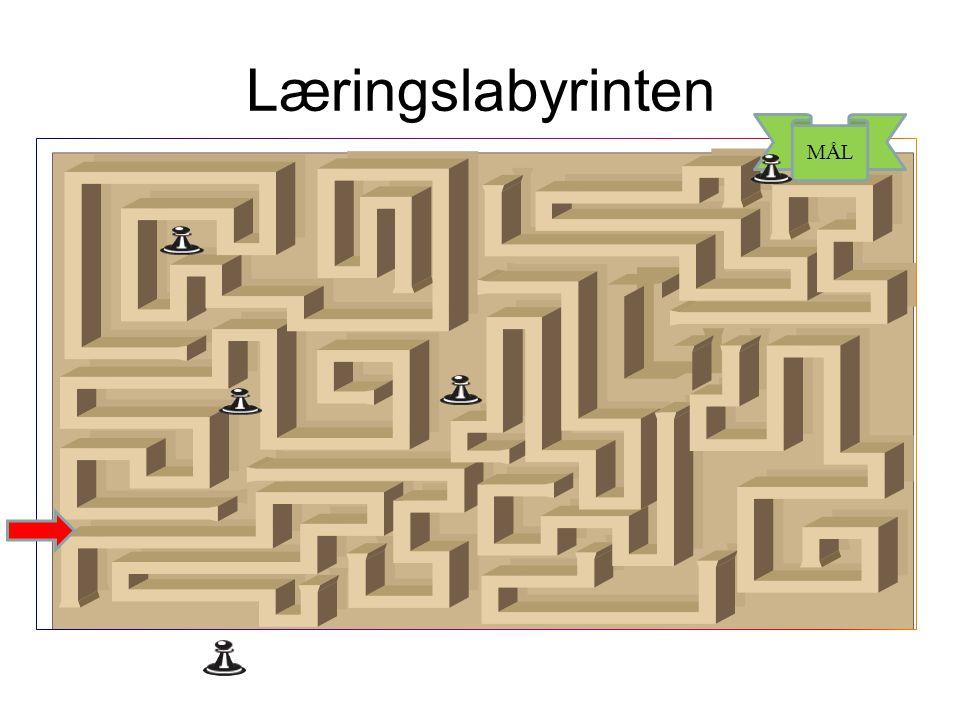 Læringslabyrinten MÅL