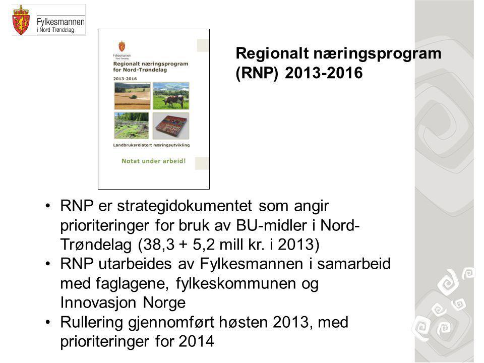•RNP er strategidokumentet som angir prioriteringer for bruk av BU-midler i Nord- Trøndelag (38,3 + 5,2 mill kr.