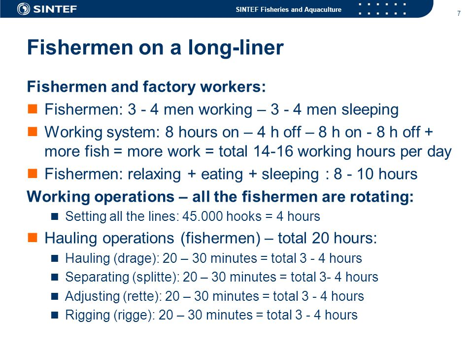 SINTEF Fisheries and Aquaculture 7 Fishermen on a long-liner Fishermen and factory workers:  Fishermen: 3 - 4 men working – 3 - 4 men sleeping  Work