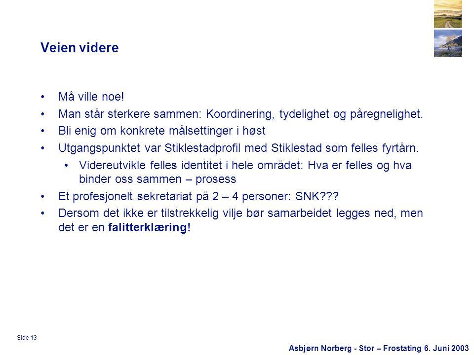 Asbjørn Norberg - Stor – Frostating 6. Juni 2003 Side 13 Veien videre •Må ville noe.