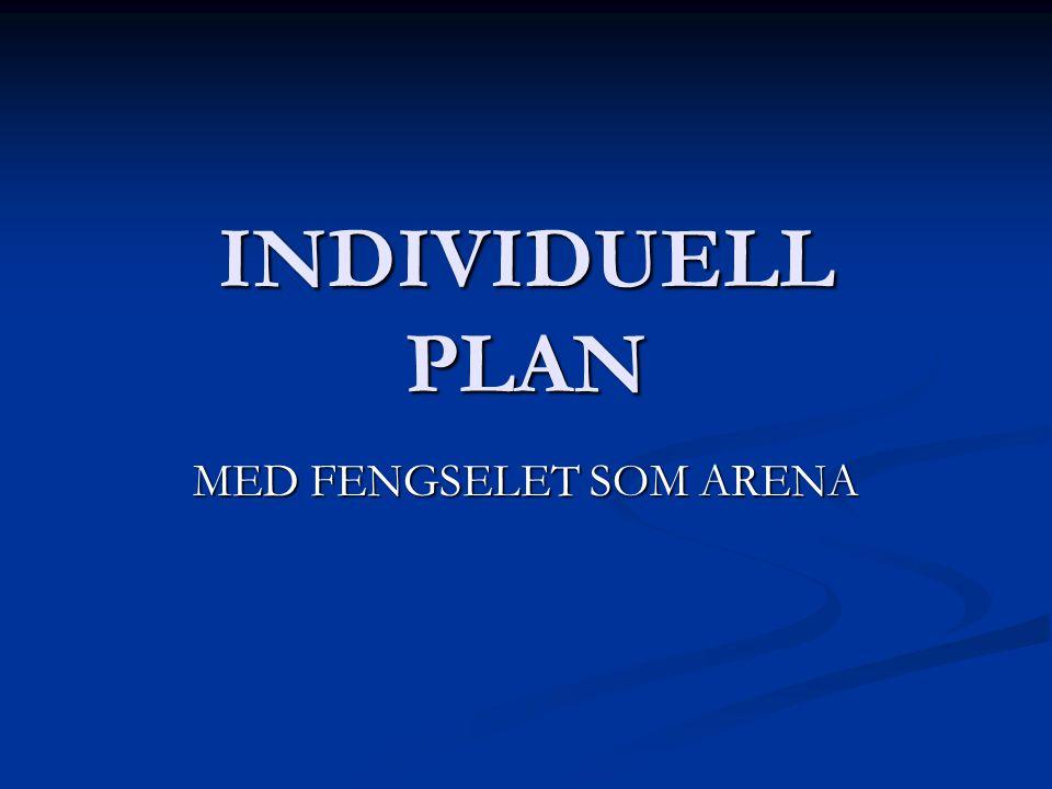 Hvem har krav på en individuell plan.
