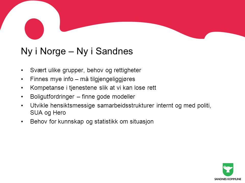 Ny i Norge – Ny i Sandnes •Svært ulike grupper, behov og rettigheter •Finnes mye info – må tilgjengeliggjøres •Kompetanse i tjenestene slik at vi kan