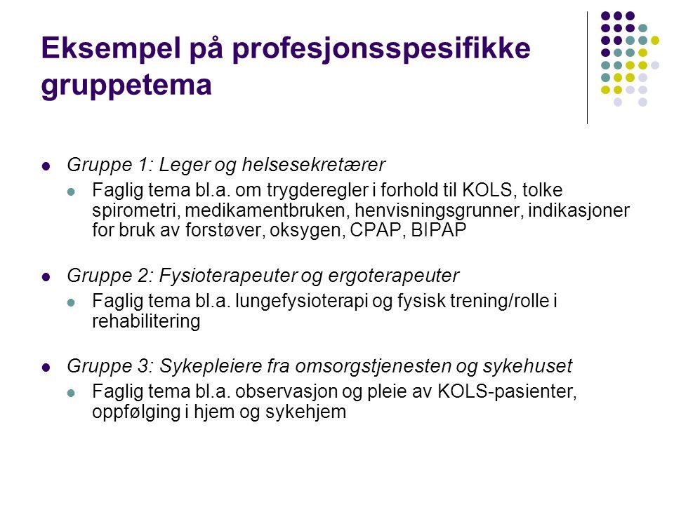 Eksempel på profesjonsspesifikke gruppetema  Gruppe 1: Leger og helsesekretærer  Faglig tema bl.a. om trygderegler i forhold til KOLS, tolke spirome