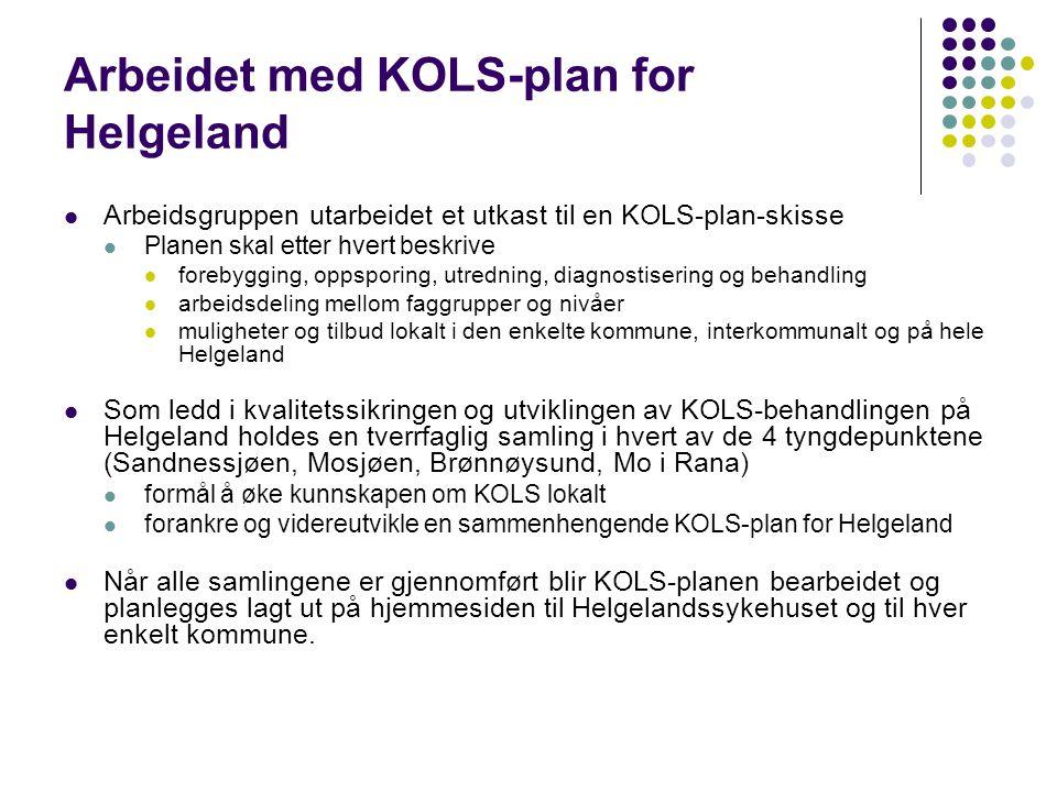KOLS-plan Helgeland – lokal variant Forslag til innhold  KOLS-planen omfatter følgende aktører:  Pasienten selv, pårørende, fastlege, fysioterapeut, FYSAK, LHL, hjemmetjenesten/sykehjem, NAV/HELFO, Sandnessjøen/Mosjøen/Rana sykehus med lungeansvarlig lege og sykepleier, LMS, Sømna rehabilitering, Kontor for behandlingshjelpemidler, ernæringsfysiolog, bedriftshelsetjenesten  Generelle anbefalinger til utredning/behandling/oppfølging - flytskjema  Lokale variasjoner ved førstelinjehåndtering (beskrives/avtales for den enkelte kommune):  FYSAK.