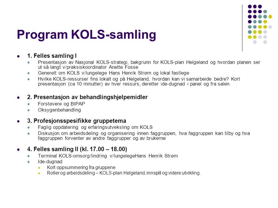 Eksempel på presentasjon av lokale ressurser  Lungesykepleier presenterer KOLS-skolen  Ernæringsfysiolog om KOLS og ernæring  Fysioterapeut om fysioterapiressurser og plan  FYSAK, presentasjon  LMS  Bedriftshelsetjenesten  Helgeland Rehabilitering i Sømna (HRIS)  HELFO om KOLS-rettigheter  Omsorgstjenesten om KOLS og samarbeid  Fastlege om KOLS i førstelinjen  Lungelege Hans Henrik Strøm om KOLS i andrelinjen og om prioriteringsforskriften  Brukeren forteller