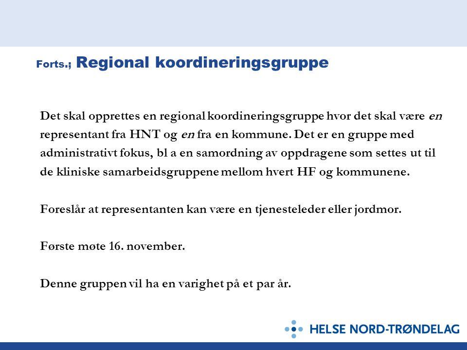 Forts.; Regional koordineringsgruppe Det skal opprettes en regional koordineringsgruppe hvor det skal være en representant fra HNT og en fra en kommun