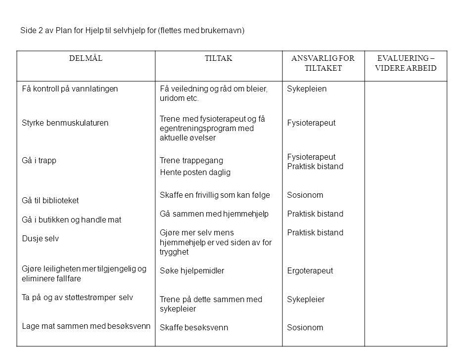 Side 2 av Plan for Hjelp til selvhjelp for (flettes med brukernavn) DELMÅLTILTAKANSVARLIG FOR TILTAKET EVALUERING – VIDERE ARBEID Få kontroll på vannl