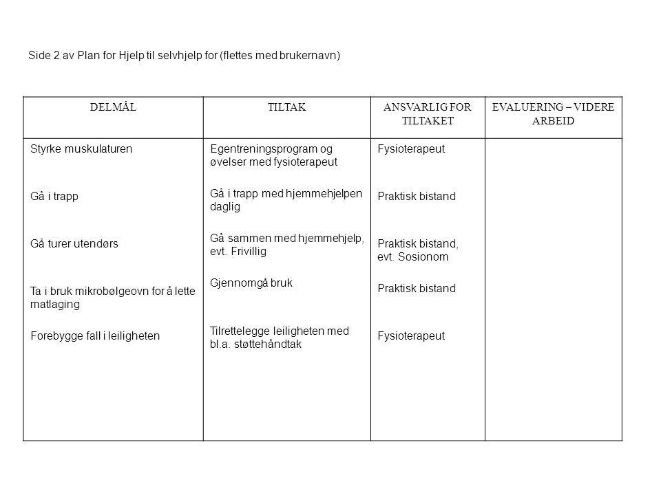 Side 2 av Plan for Hjelp til selvhjelp for (flettes med brukernavn) DELMÅLTILTAKANSVARLIG FOR TILTAKET EVALUERING – VIDERE ARBEID Styrke muskulaturen