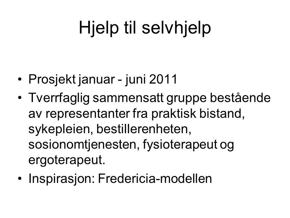 Hjelp til selvhjelp •Prosjekt januar - juni 2011 •Tverrfaglig sammensatt gruppe bestående av representanter fra praktisk bistand, sykepleien, bestille
