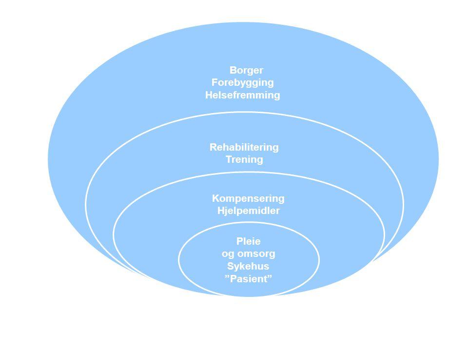 """Borger Forebygging Helsefremming Rehabilitering Trening Kompensering Hjelpemidler Pleie og omsorg Sykehus """"Pasient"""""""