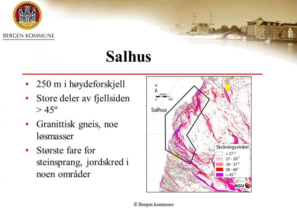 © Bergen kommune Salhus •250 m i høydeforskjell •Store deler av fjellsiden > 45º •Granittisk gneis, noe løsmasser •Største fare for steinsprang, jords