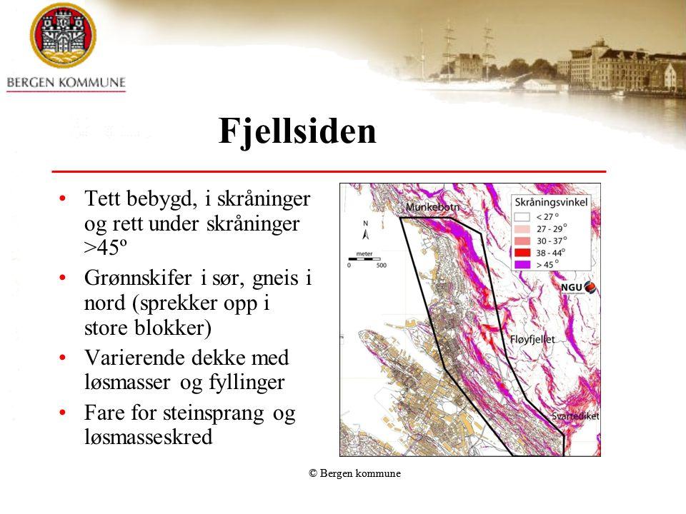Fjellsiden •Tett bebygd, i skråninger og rett under skråninger >45º •Grønnskifer i sør, gneis i nord (sprekker opp i store blokker) •Varierende dekke