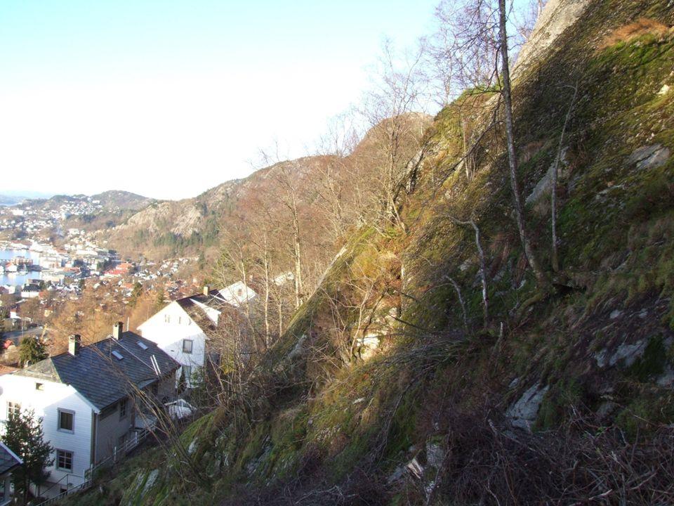© Bergen kommune