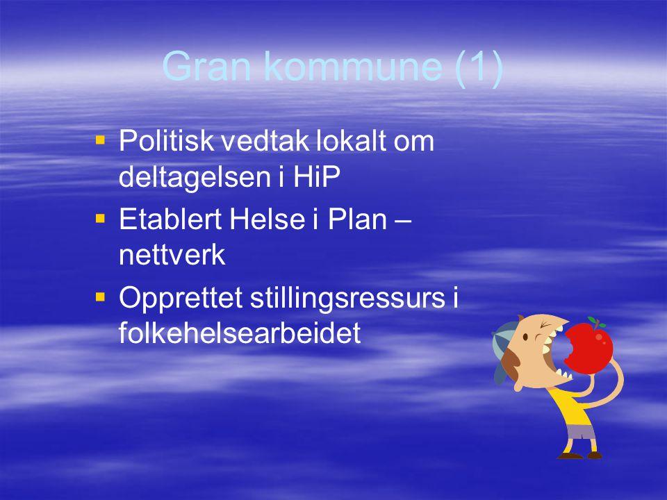 Gran kommune (1)   Politisk vedtak lokalt om deltagelsen i HiP   Etablert Helse i Plan – nettverk   Opprettet stillingsressurs i folkehelsearbei