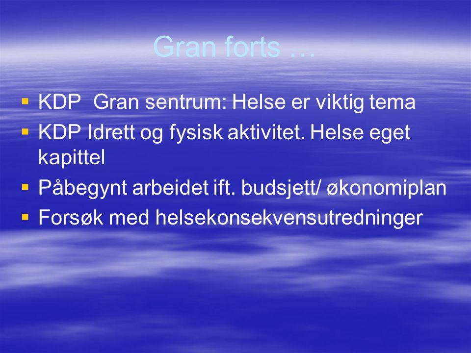 Gran forts …   KDP Gran sentrum: Helse er viktig tema   KDP Idrett og fysisk aktivitet. Helse eget kapittel   Påbegynt arbeidet ift. budsjett/ ø