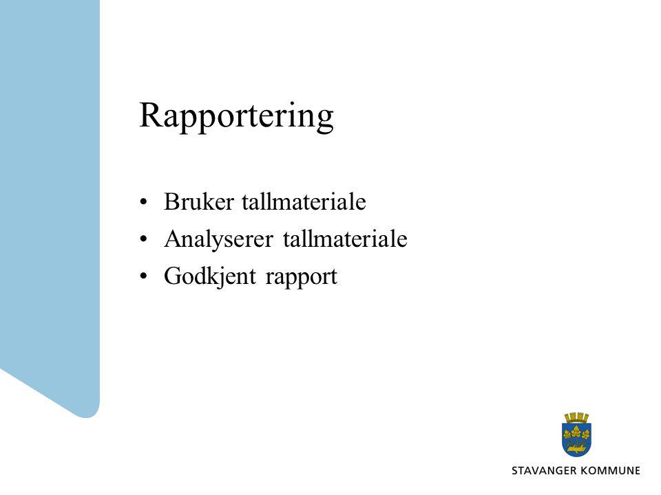 Rapportering •Bruker tallmateriale •Analyserer tallmateriale •Godkjent rapport