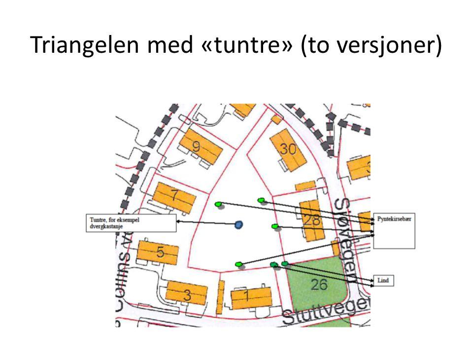 Triangelen med «tuntre» (to versjoner)