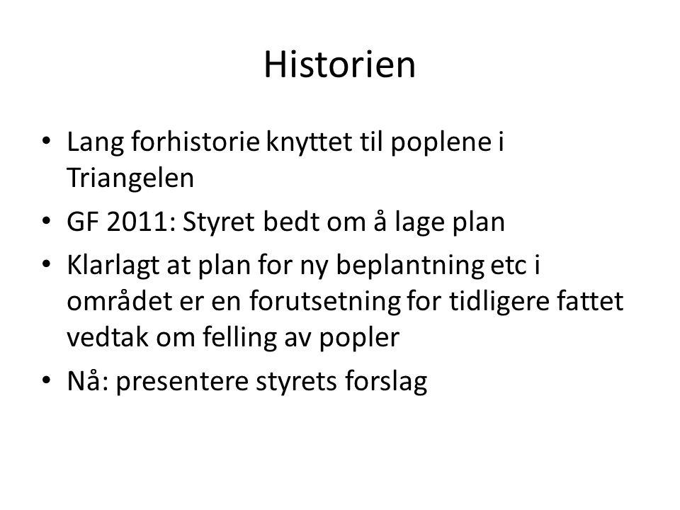 Historien • Lang forhistorie knyttet til poplene i Triangelen • GF 2011: Styret bedt om å lage plan • Klarlagt at plan for ny beplantning etc i område