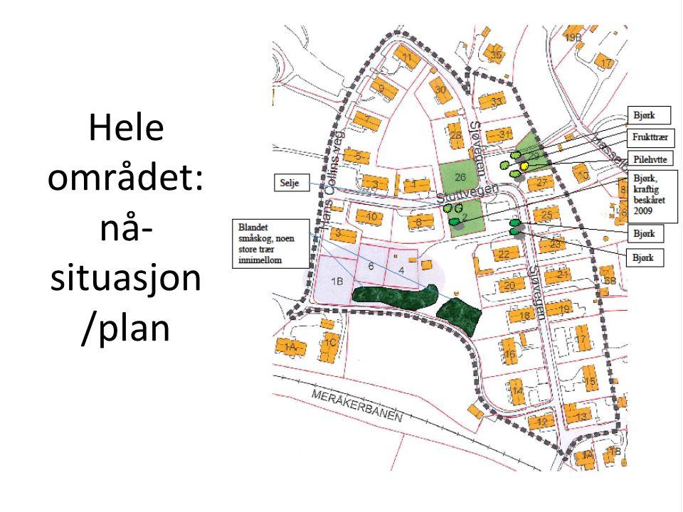 Hele området: nå- situasjon /plan