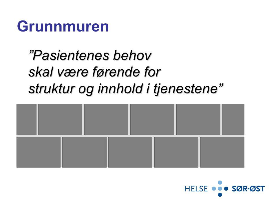 """Grunnmuren """"Pasientenes behov skal være førende for struktur og innhold i tjenestene"""""""
