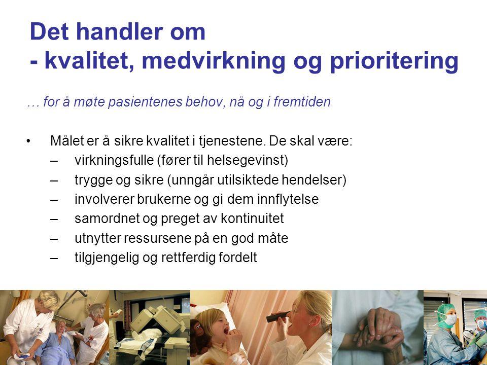 Styresak 108-2008 pkt 10 Inndeling i sykehusområder 7 sykehusområder