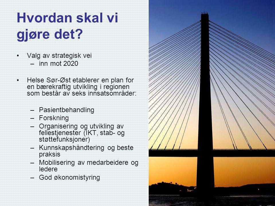 Hvordan skal vi gjøre det? •Valg av strategisk vei –inn mot 2020 •Helse Sør-Øst etablerer en plan for en bærekraftig utvikling i regionen som består a