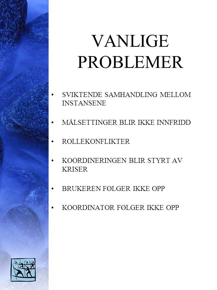 VANLIGE PROBLEMER •SVIKTENDE SAMHANDLING MELLOM INSTANSENE •MÅLSETTINGER BLIR IKKE INNFRIDD •ROLLEKONFLIKTER •KOORDINERINGEN BLIR STYRT AV KRISER •BRU