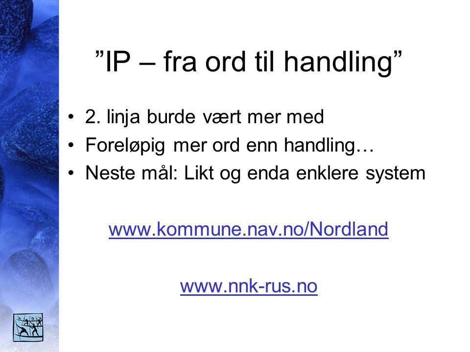 IP – fra ord til handling •2.