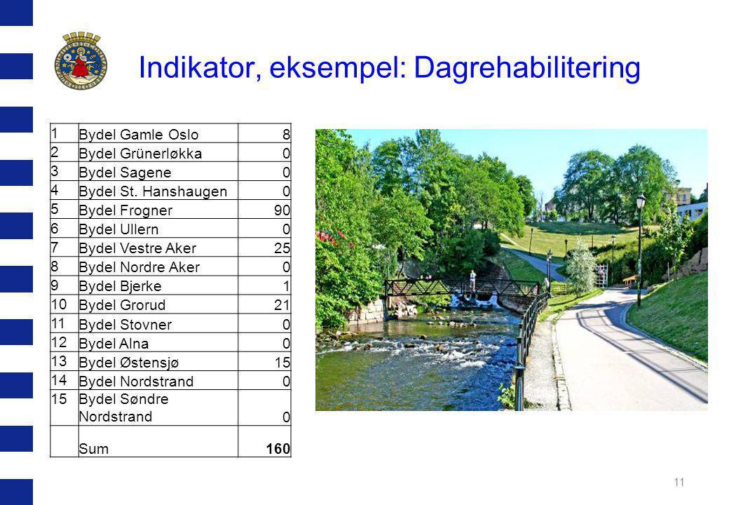 Indikator, eksempel: Dagrehabilitering 11 1 Bydel Gamle Oslo8 2 Bydel Grünerløkka0 3 Bydel Sagene0 4 Bydel St.