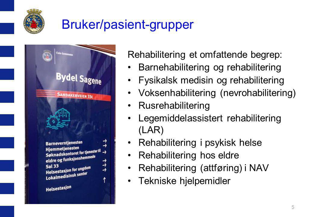 Bruker/pasient-grupper Rehabilitering et omfattende begrep: •Barnehabilitering og rehabilitering •Fysikalsk medisin og rehabilitering •Voksenhabilitering (nevrohabilitering) •Rusrehabilitering •Legemiddelassistert rehabilitering (LAR) •Rehabilitering i psykisk helse •Rehabilitering hos eldre •Rehabilitering (attføring) i NAV •Tekniske hjelpemidler 5