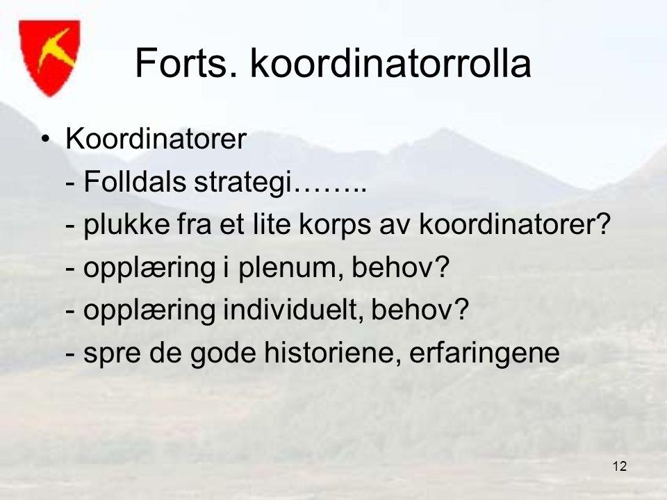 12 Forts. koordinatorrolla •Koordinatorer - Folldals strategi…….. - plukke fra et lite korps av koordinatorer? - opplæring i plenum, behov? - opplærin