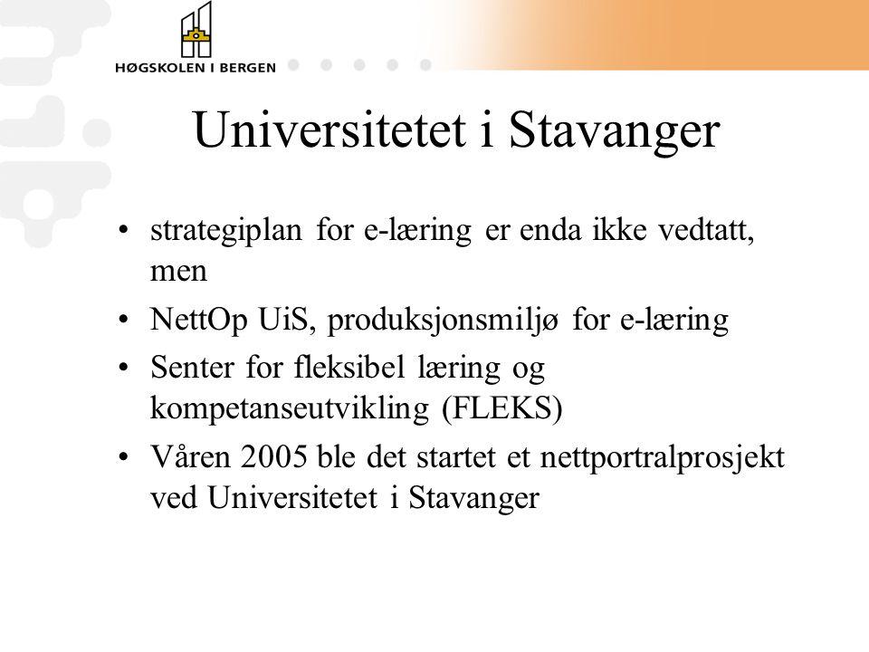 Universitetet i Stavanger •strategiplan for e-læring er enda ikke vedtatt, men •NettOp UiS, produksjonsmiljø for e-læring •Senter for fleksibel læring og kompetanseutvikling (FLEKS) •Våren 2005 ble det startet et nettportralprosjekt ved Universitetet i Stavanger