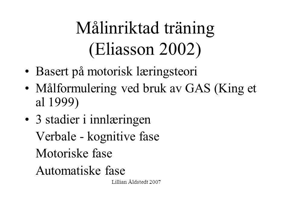 Lillian Åldstedt, ergoterapispesialist i barns helse, Stavanger 2007.