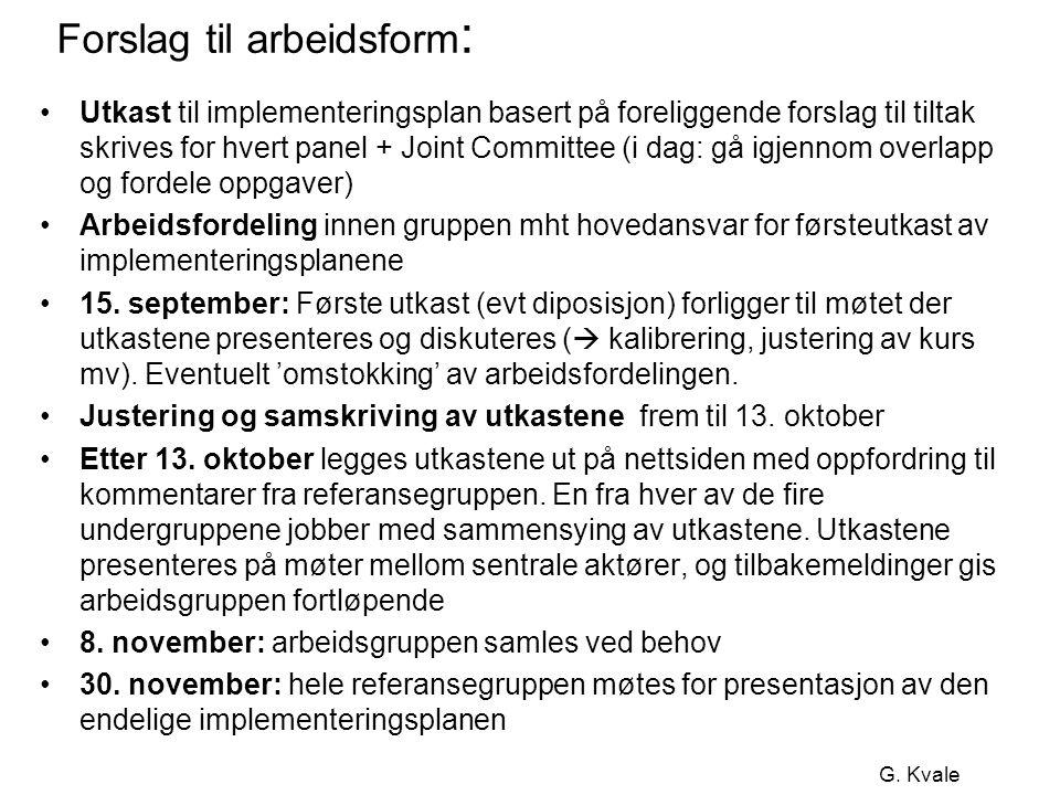G. Kvale Forslag til arbeidsform : •Utkast til implementeringsplan basert på foreliggende forslag til tiltak skrives for hvert panel + Joint Committee