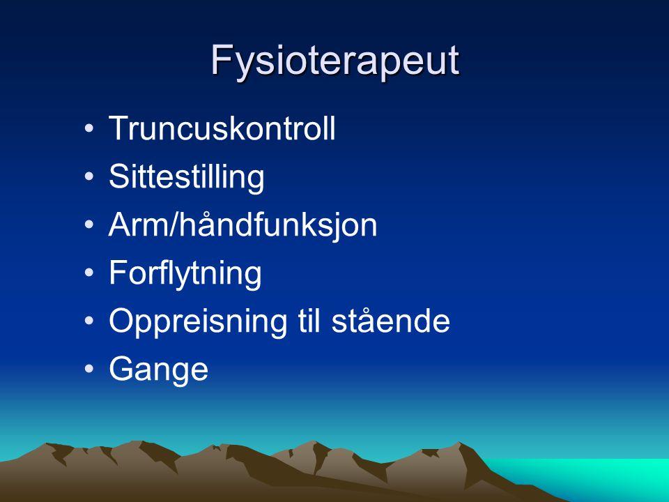 Fysioterapeut •Truncuskontroll •Sittestilling •Arm/håndfunksjon •Forflytning •Oppreisning til stående •Gange