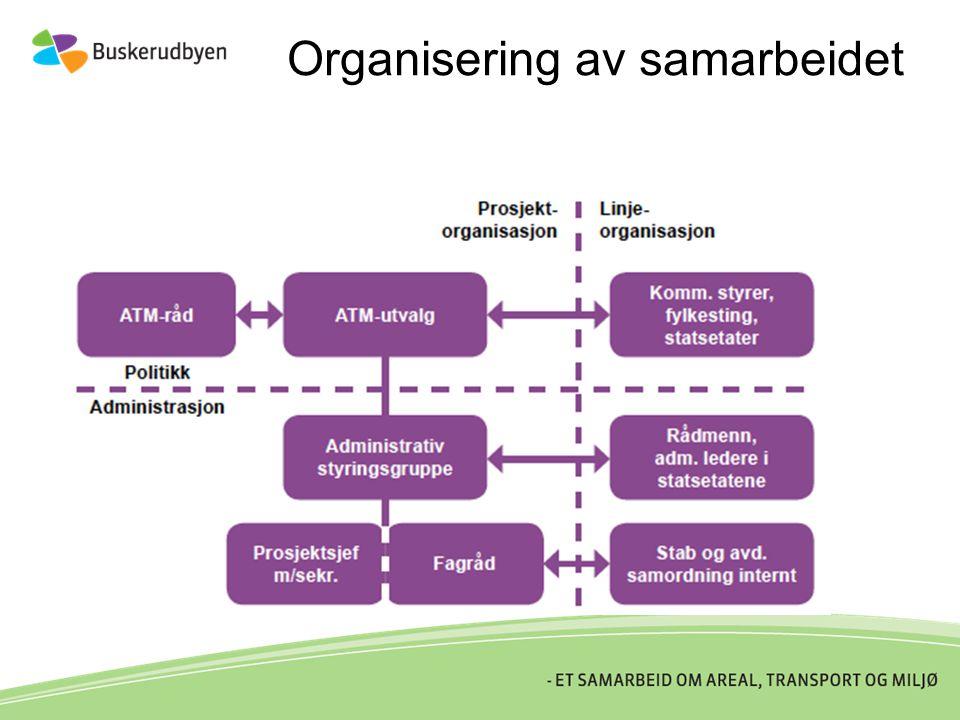 Organisering av samarbeidet