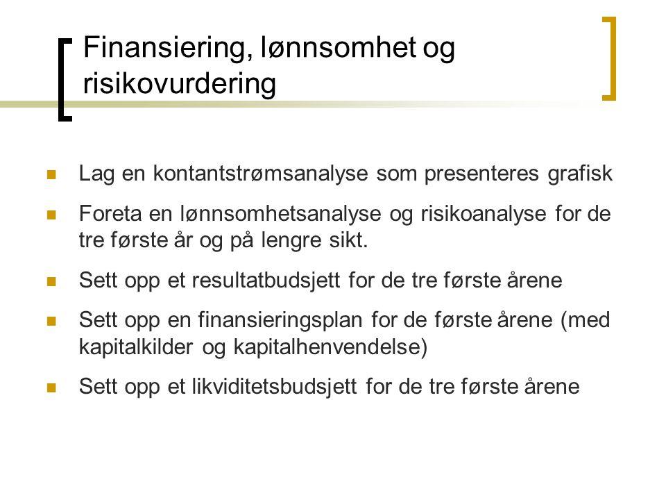 Finansiering, lønnsomhet og risikovurdering  Lag en kontantstrømsanalyse som presenteres grafisk  Foreta en lønnsomhetsanalyse og risikoanalyse for