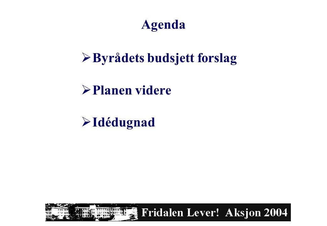 Agenda  Byrådets budsjett forslag  Planen videre  Idédugnad