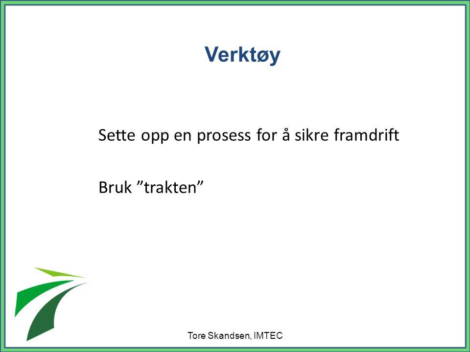 Sette opp en prosess for å sikre framdrift Bruk trakten Tore Skandsen, IMTEC Verktøy
