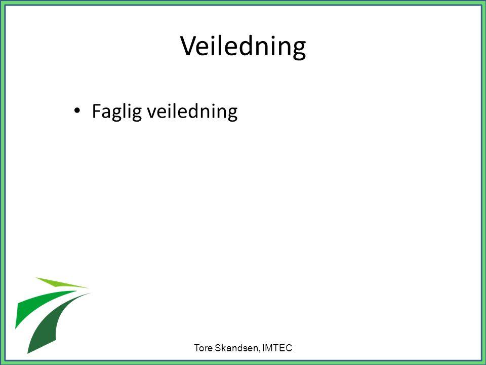 Veiledning • Faglig veiledning Tore Skandsen, IMTEC
