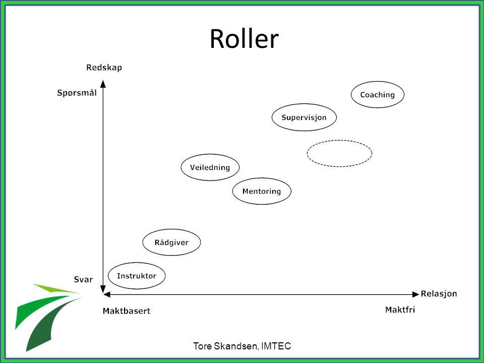 Roller Tore Skandsen, IMTEC
