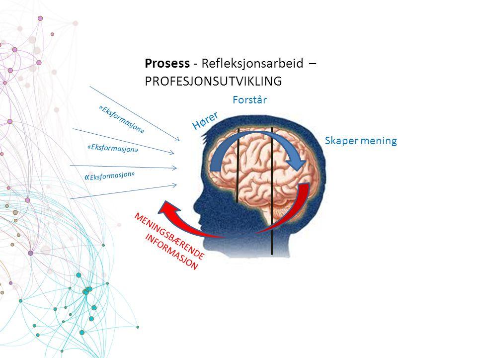 Prosess - Refleksjonsarbeid – PROFESJONSUTVIKLING «Eksformasjon» Forstår Skaper mening MENINGSBÆRENDE INFORMASJON Hører