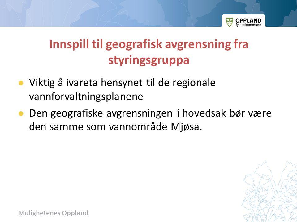 Mulighetenes Oppland Innspill til geografisk avgrensning fra styringsgruppa  Viktig å ivareta hensynet til de regionale vannforvaltningsplanene  Den geografiske avgrensningen i hovedsak bør være den samme som vannområde Mjøsa.