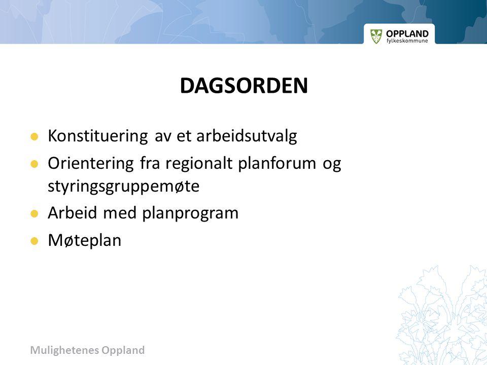 Mulighetenes Oppland DAGSORDEN  Konstituering av et arbeidsutvalg  Orientering fra regionalt planforum og styringsgruppemøte  Arbeid med planprogram  Møteplan