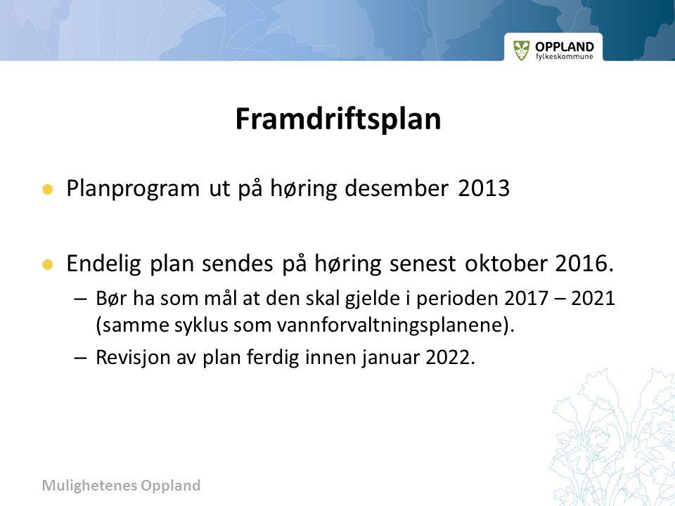 Mulighetenes Oppland Framdriftsplan  Planprogram ut på høring desember 2013  Endelig plan sendes på høring senest oktober 2016.