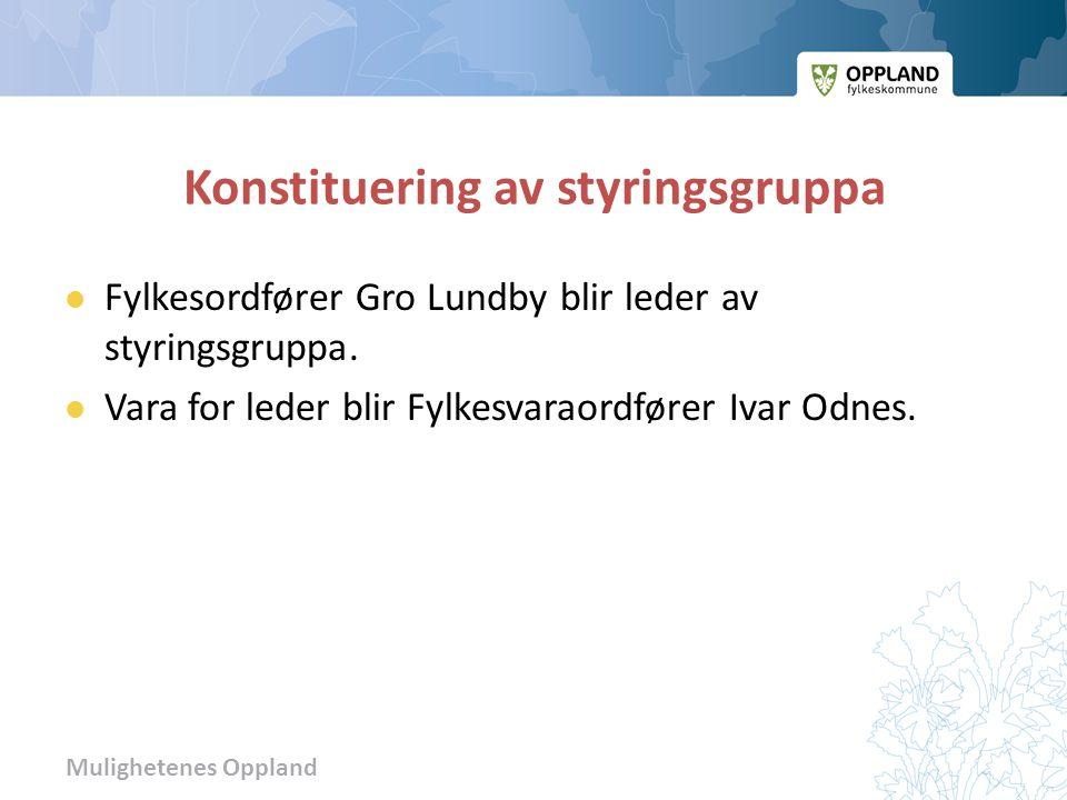 Mulighetenes Oppland Konstituering av styringsgruppa  Fylkesordfører Gro Lundby blir leder av styringsgruppa.