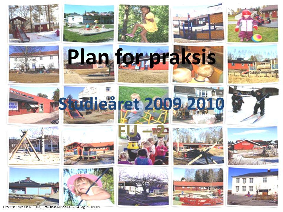 Plan for praksis Studieåret 2009 2010 FU – 2 Gro Lise Syversen – HIØ, Praksisseminar FU 2 14.