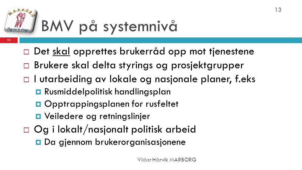 BMV på systemnivå Vidar Hårvik MARBORG 13  Det skal opprettes brukerråd opp mot tjenestene  Brukere skal delta styrings og prosjektgrupper  I utarb