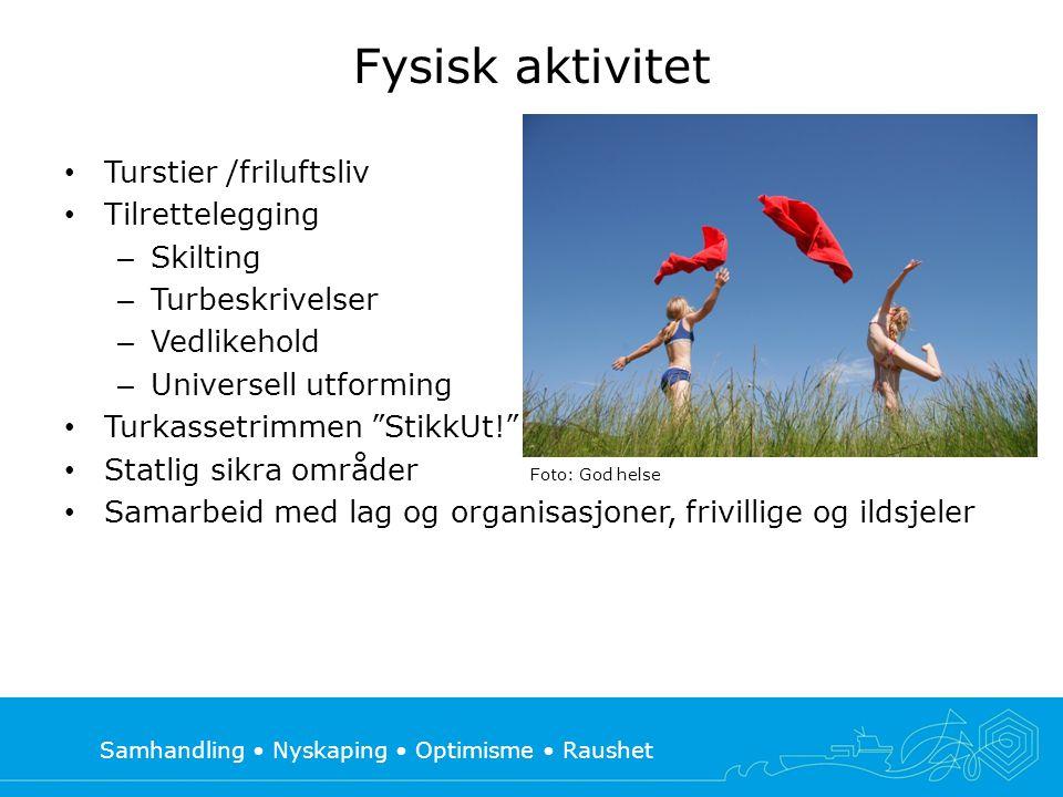 Samhandling • Nyskaping • Optimisme • Raushet Fysisk aktivitet • Turstier /friluftsliv • Tilrettelegging – Skilting – Turbeskrivelser – Vedlikehold –